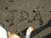 JDA STAFF ブログ